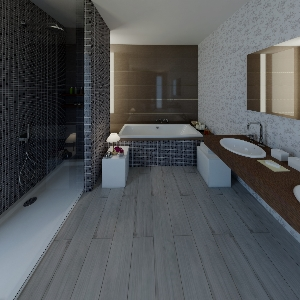 Bathroom Atlas_Concorde-Variation_4-01 (Sergii Buchovskyi)