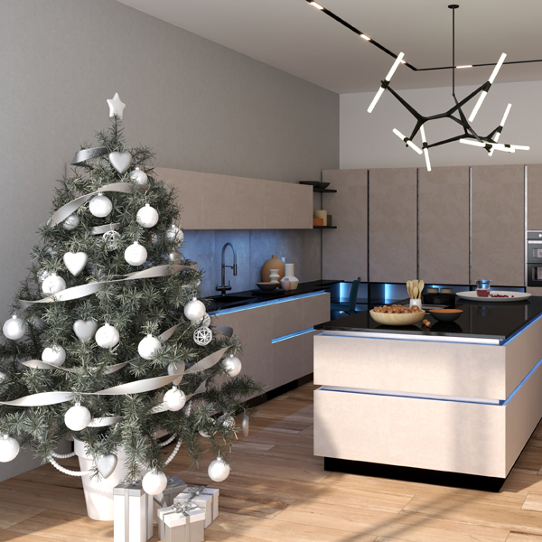 Kitchen December 2020 (ViSoft)
