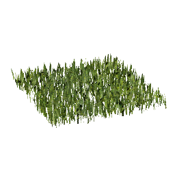3D Model - Grass 0.5m square (Tom)